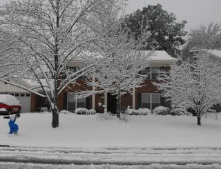 Snow 2010 030-1