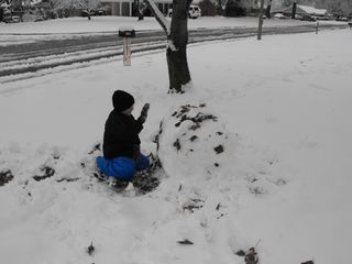 Snow 2010 064