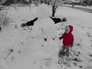 Snow 2010 074