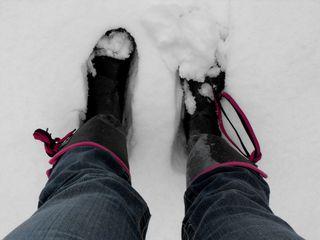 Snow 2010 040