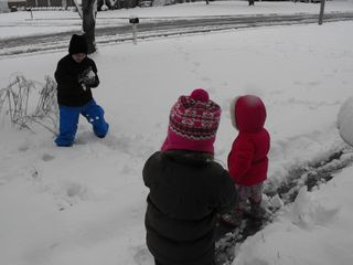 Snow 2010 052
