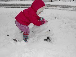 Snow 2010 067
